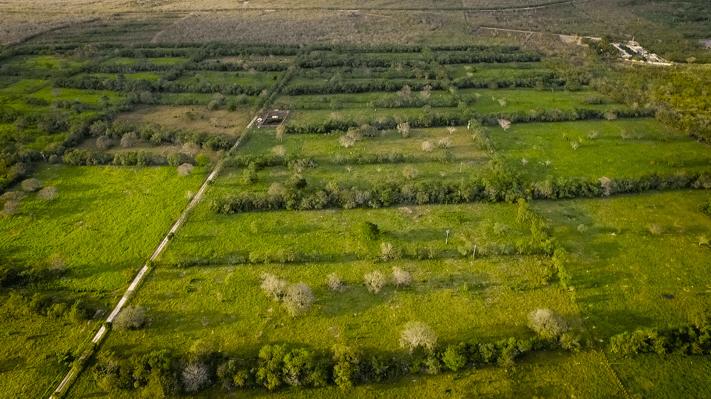 terrenos en yucatán