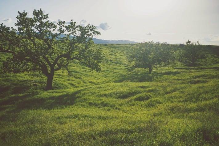 terreno ejidal mito de compra terreno